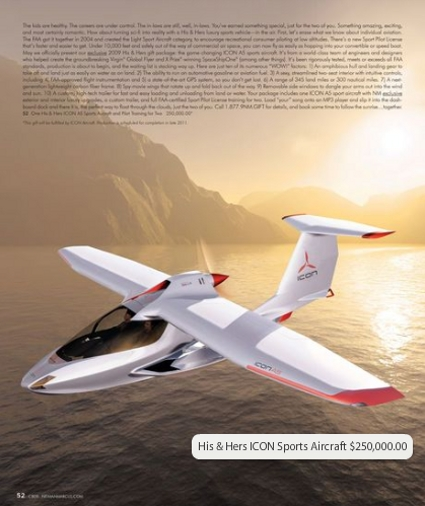 His & Hers ICON A5 Sports Aircraft and Pilot Training for Two ($250,000)